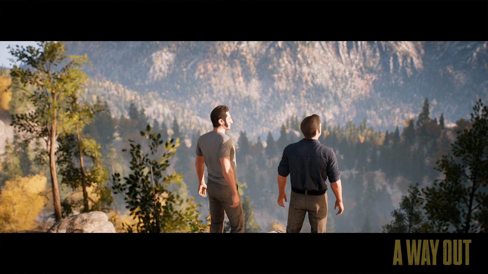 Find PC system requirements for A Way Out, a game produced by Hazelight  studios and director Josef Fares.