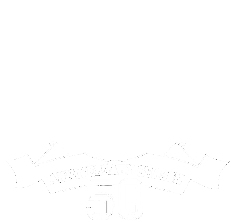 Madden NFL 10 AFL Legacy