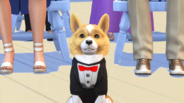 Sims Four Cats And Dogs Release Date
