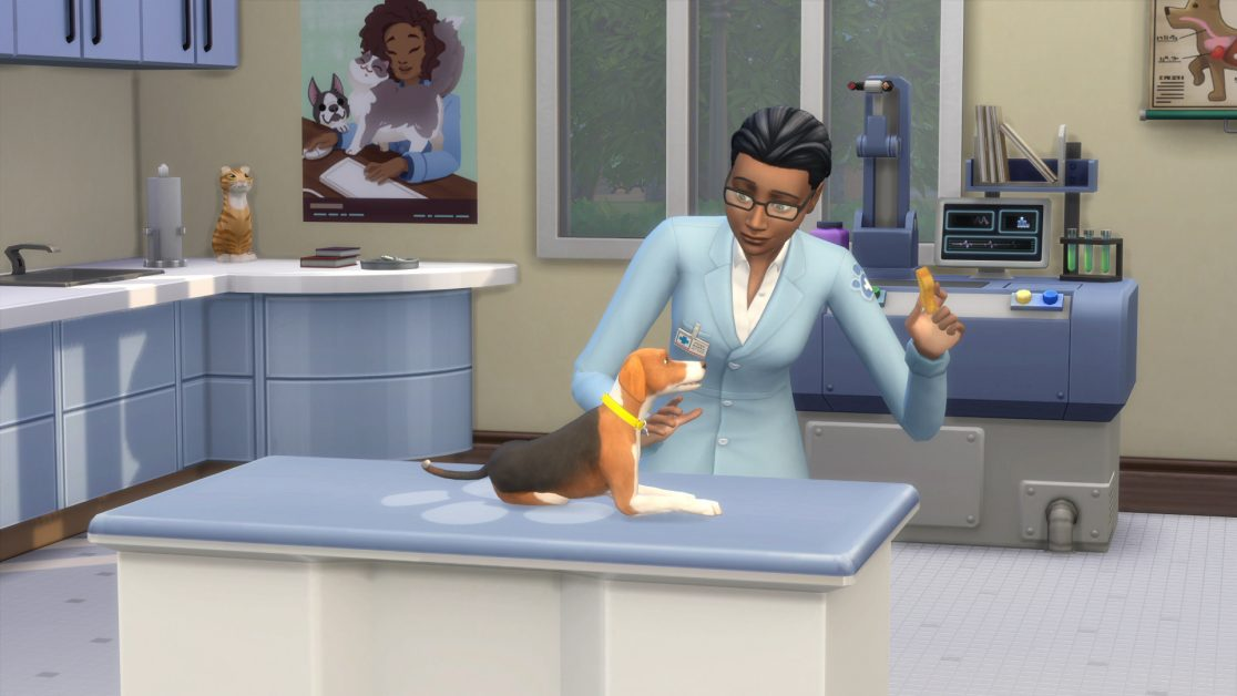 Open Your Very Own Vet Clinic!