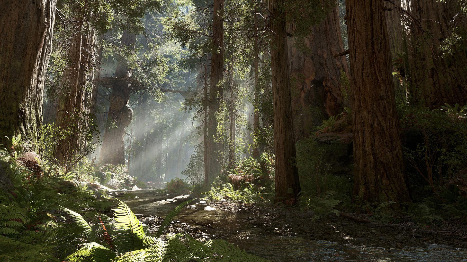 Планеты Star Wars Battlefront: как создавался Эндор